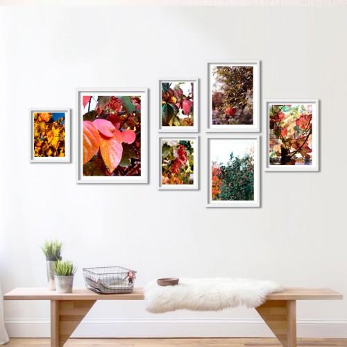 My Garden Çerçeveli Poster Seti