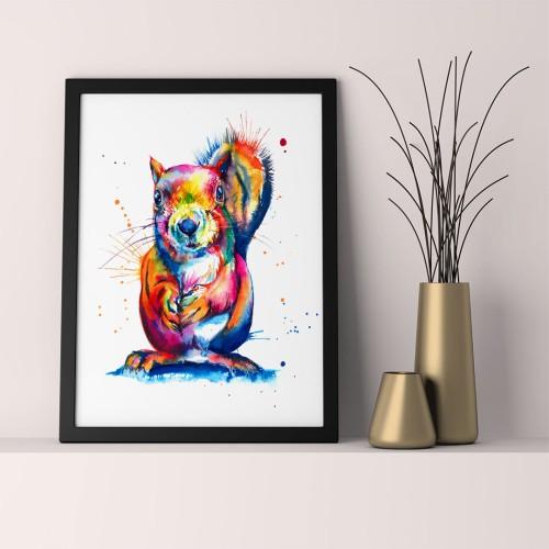 Renkli Sincap Çerçeveli Poster