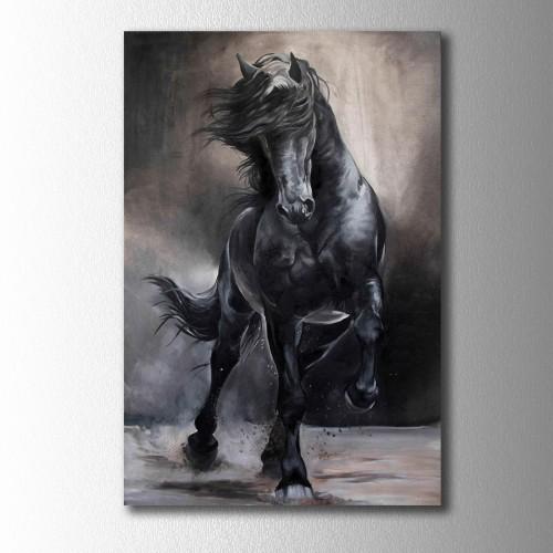 Siyah At Kanvas Tablo