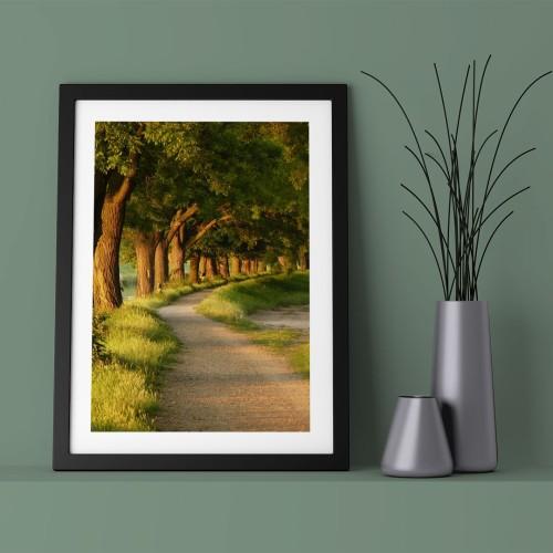 Yol ve Orman Çerçeveli Poster