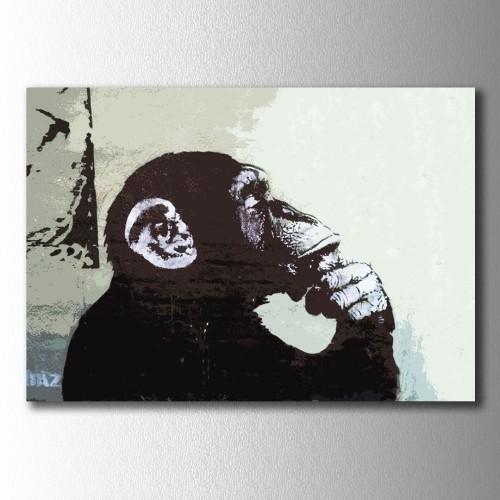 Düşünen Maymun Kanvas Tablo