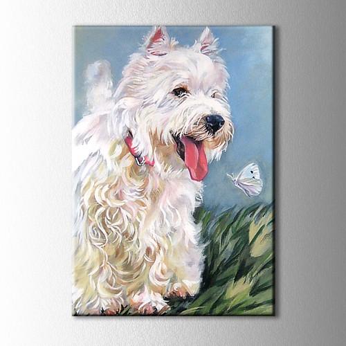 Beyaz Köpek ve Kelebek Kanvas Tablo
