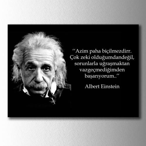 Einstein Azim Kanvas Tablo