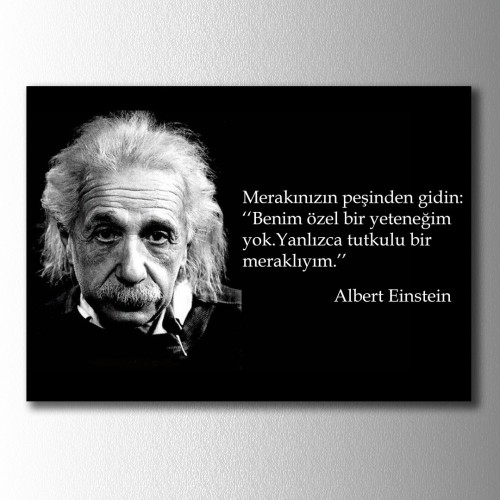 Einstein Merak Kanvas Tablo