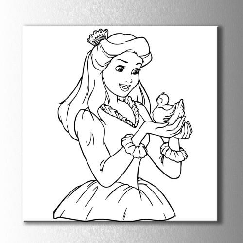 Kuş ve Prenses Boyama Kanvas Tablo