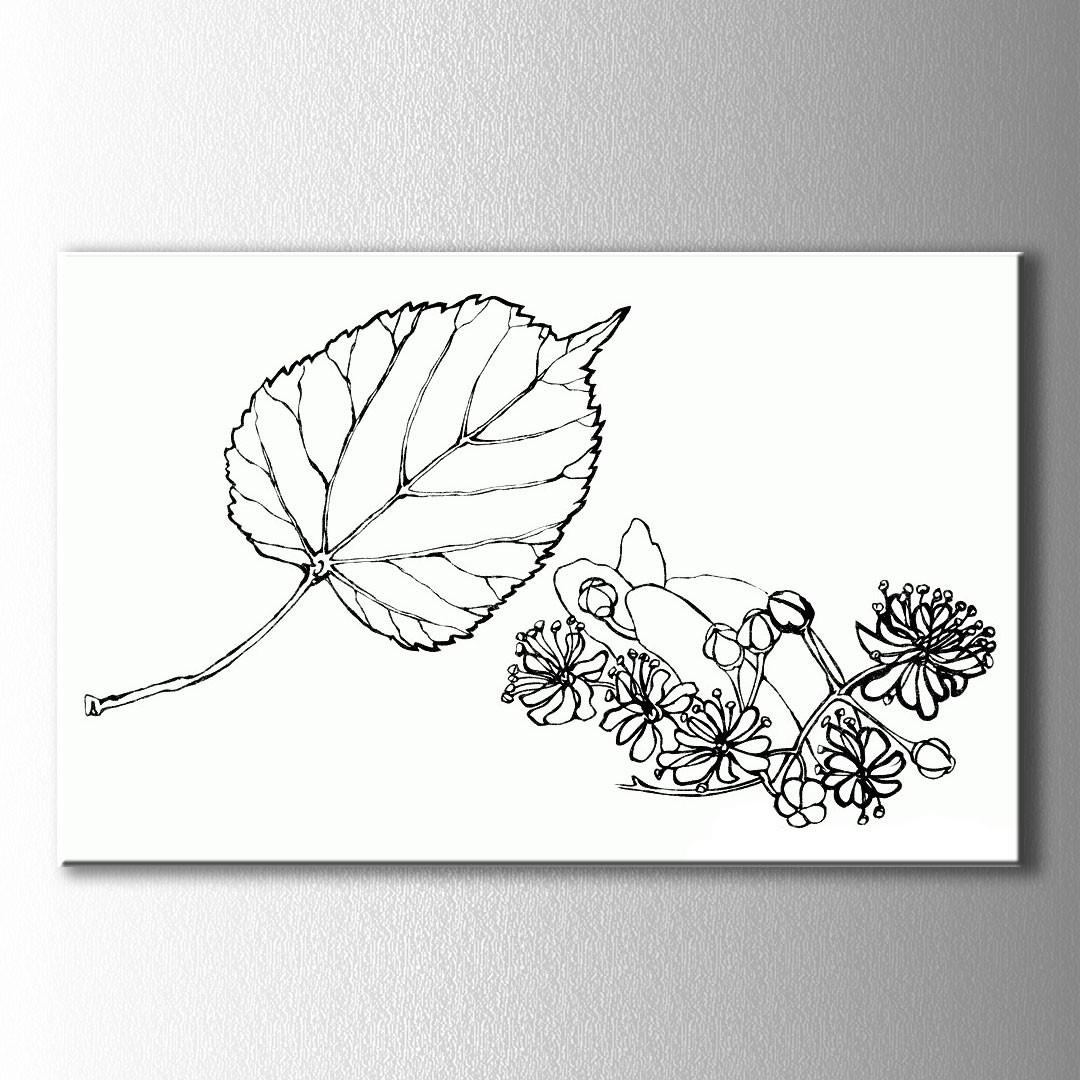 Yaprak Ve çiçekler Boyama Kanvas Tablo