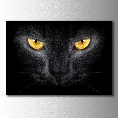 Sarı Gözlü Siyah Kedi Kanvas Tablo