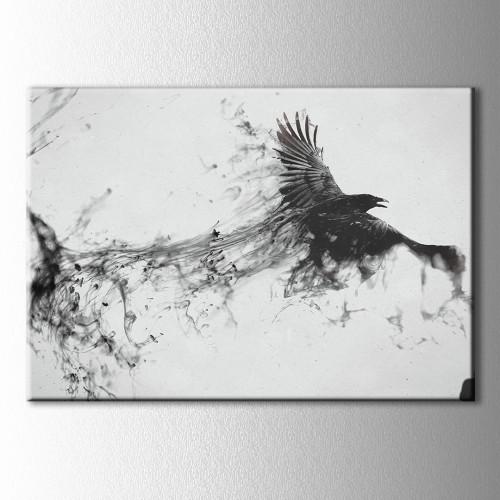 Siyah Beyaz Karga Kanvas Tablo