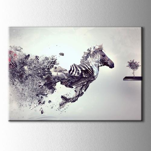 Siyah Beyaz Zebra Kanvas Tablo