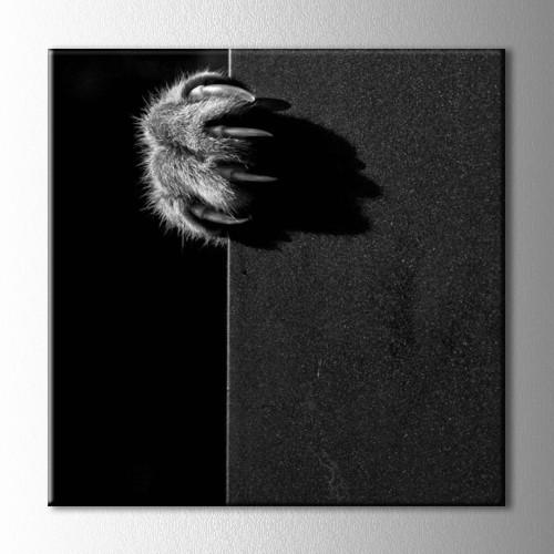 Siyah Beyaz Pençe Kanvas Tablo