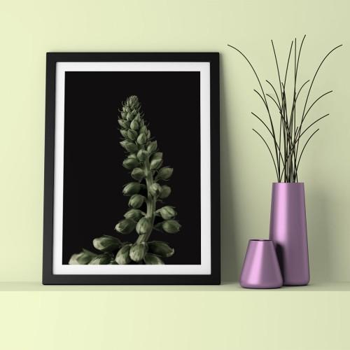 Yeşil Tomurcuk Çerçeveli Poster