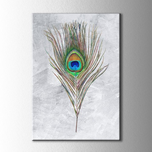 Tavus Kuşu Tüyü Kanvas Tablo