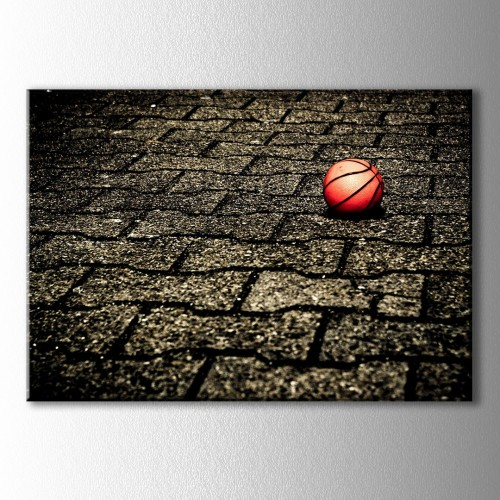 Parke Taşlar Basketbol Topu Kanvas Tablo