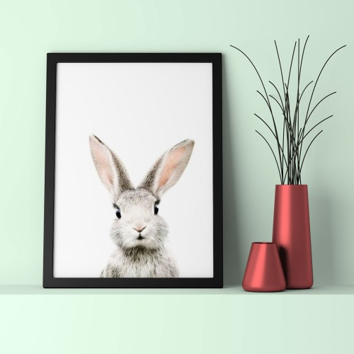 Yavru Tavşan Çerçeveli Poster