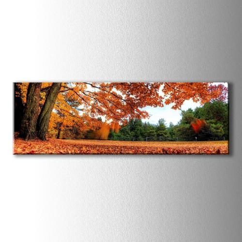 Panaromik Sonbahar Yaprakları Kanvas Tablo