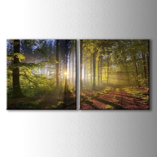 2 Parçalı Orman İçinde Süzülen Güneş Işıkları Kanvas Tablo
