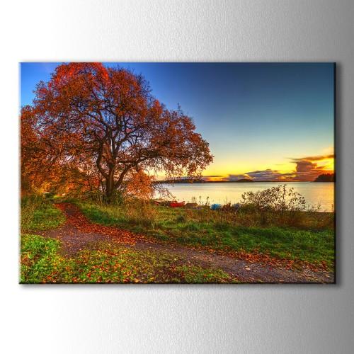 Kırmızı Kayık ve Ağaç Kanvas Tablo