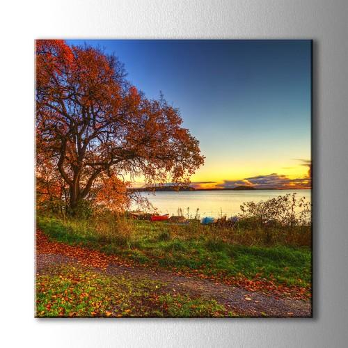 Kare Kırmızı Kayık ve Ağaç Kanvas Tablo