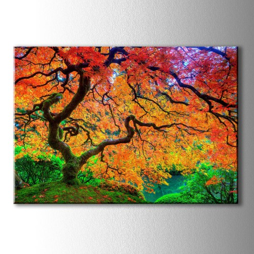 Özel Dekoratif Kırmızı Ağaç Kanvas Tablo