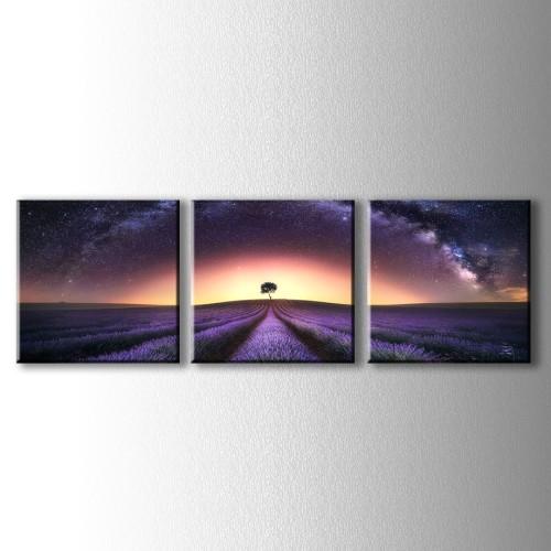 3 Parçalı Yıldızlı Gece ve Lavantalar Kanvas Tablo