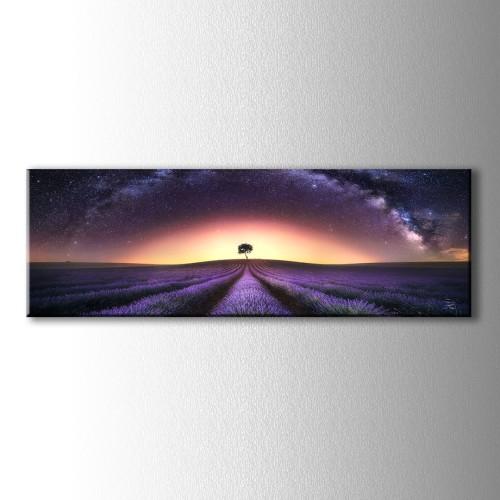 Panaromik Yıldızlı Gece ve Lavantalar Kanvas Tablo