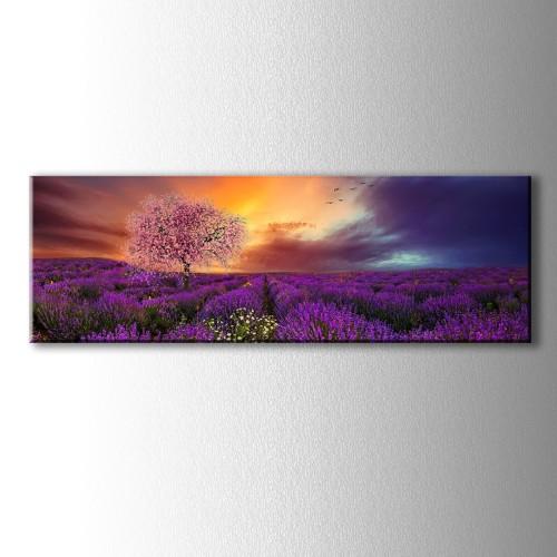 Panaromik Çiçek Açan Ağaç ve Lavantalar Kanvas Tablo