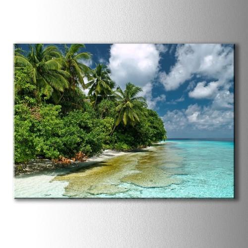 Palmiyler ve Deniz Kanvas Tablo