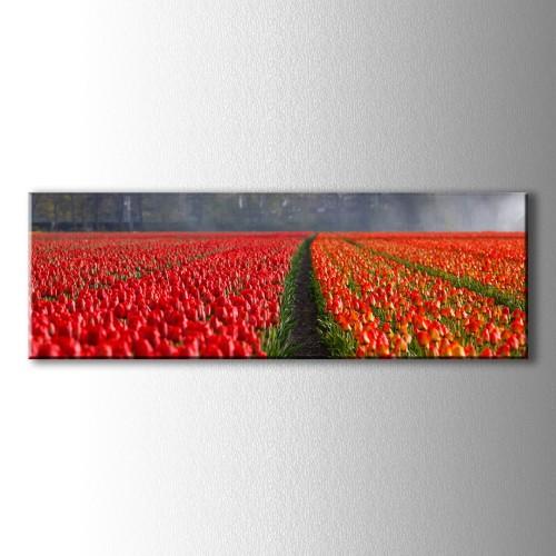 Panaromik Kırmızı Lalezar Kanvas Tablo