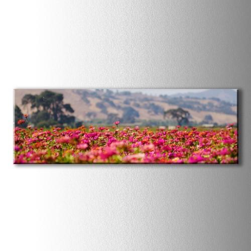 Panaromik Pembe Çiçekler Kanvas Tablo
