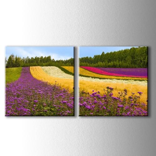 2 Parçalı Rengarenk Çiçekler Kanvas Tablo