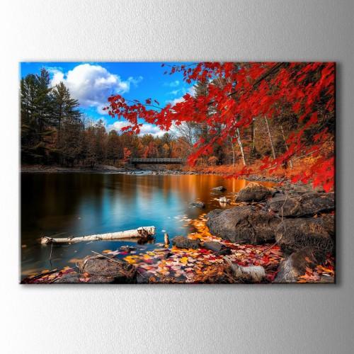 Kırmızı Yapraklı Ağaç ve Köprü Kanvas Tablo