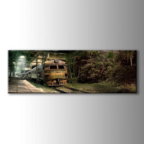 Özel Dekoratif Yeşil Tren Panaromik Kanvas Tablo