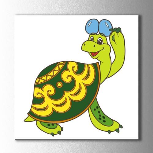 Gözlüklü Kaplumbağa Kare Kanvas Tablo