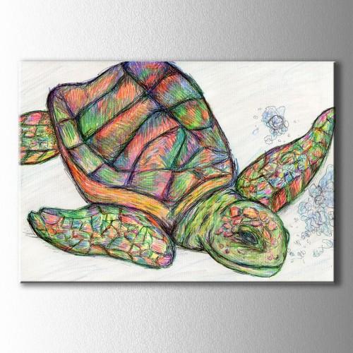 Renkli Kaplumbağa Kanvas Tablo