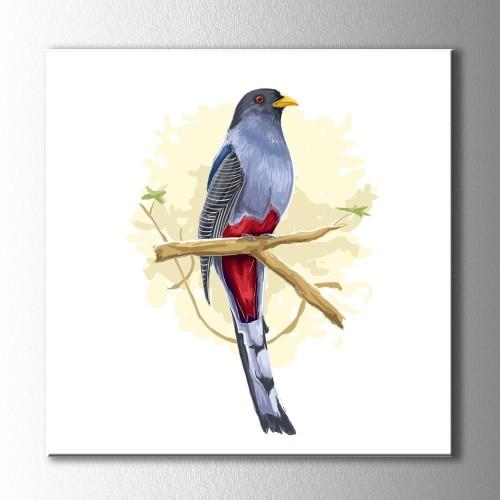 Ağaç Dalındaki Kuş Kanvas Tablo