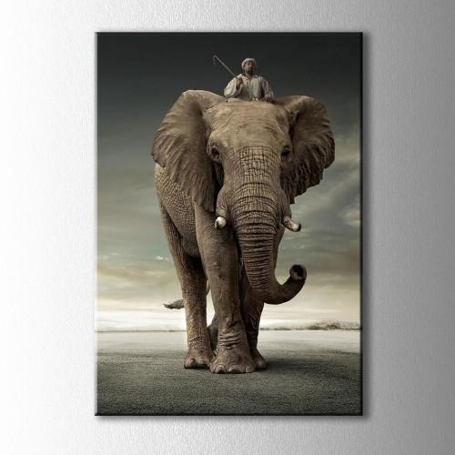 Fil Sürücüsü Kanvas Tablo