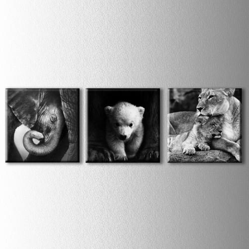 3 Parçalı Vahşi Yavrular Kanvas Tablo