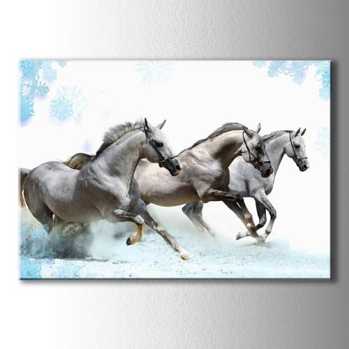 Beyaz Atlar Kanvas Tablo