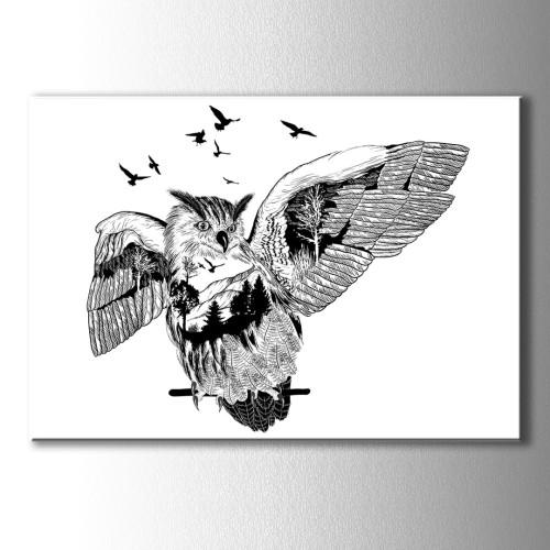 Siyah Beyaz Özel Çizim Baykuş Kanvas Tablo