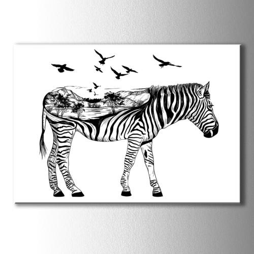Siyah Beyaz Özel Çizim Zebra Kanvas Tablo