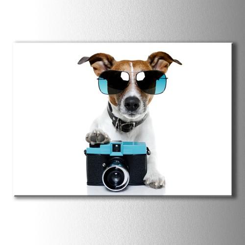 Mavi Gözlüklü Köpek Kanvas Tablo