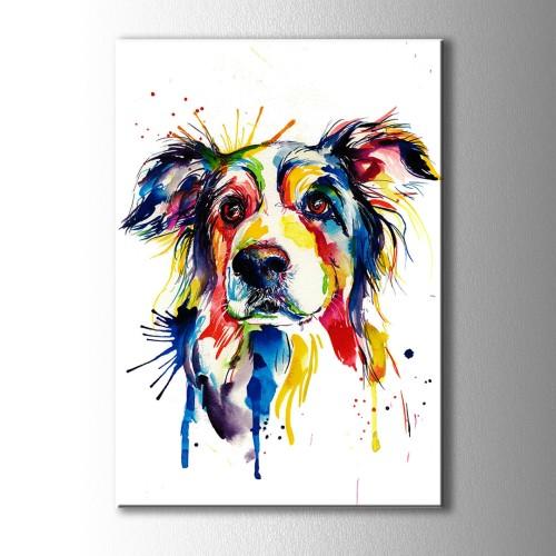 Özel Renkli Çizim Köpek Kanvas Tablo