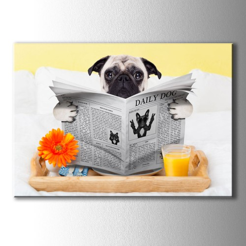 Gazete Okuyan Köpek Kanvas Tablo