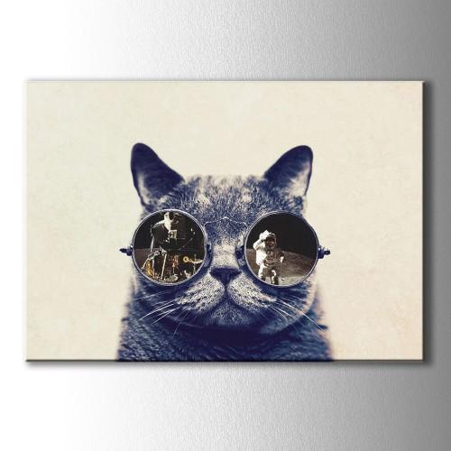 Gözlüklü Kedi Kanvas Tablo