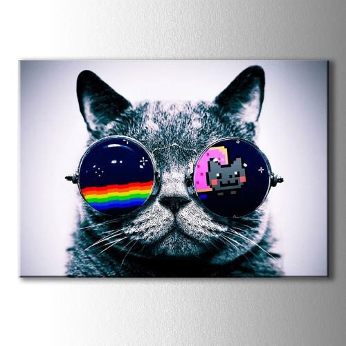 Renkli Gözlük Kedi Kanvas Tablo