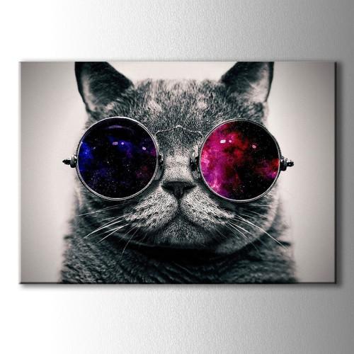 Pembe Gözlüklü Kedi Kanvas Tablo