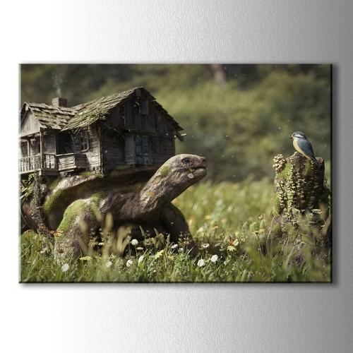 Kaplumbağa ve Kuş Kanvas Tablo