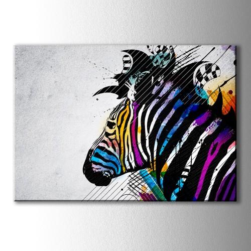 Renkli Zebra Kanvas Tablo